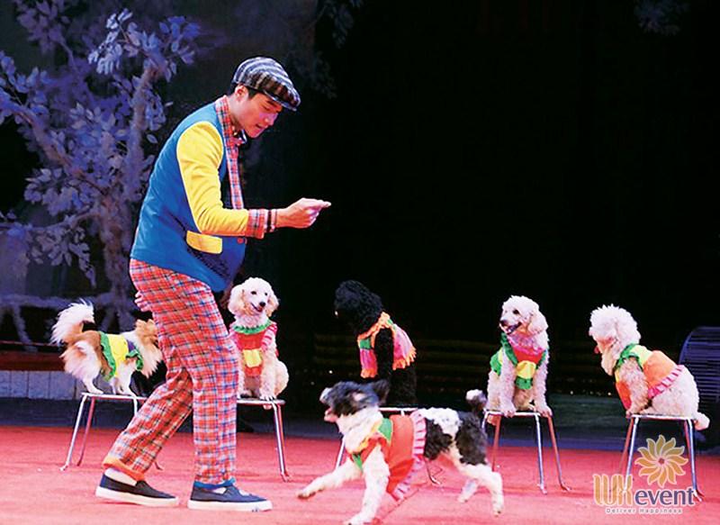 cho thuê xiếc thú tổng hợp, thuê biểu diễn ảo thuật tại Hà Nội